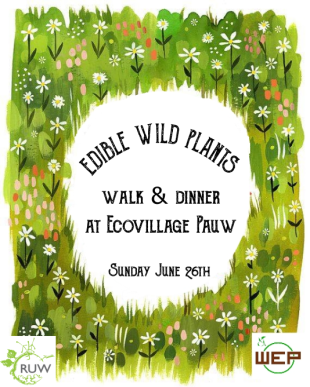 WEP-Edible herbs walk